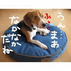 nakanaka.jpg
