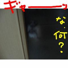 nani_20070920094136.jpg