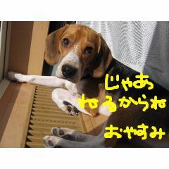 neru_20070925095938.jpg