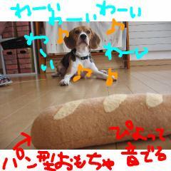 pan_20070910114423.jpg