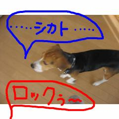 sikato.jpg