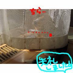 siturei_20070913093656.jpg