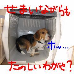 tanosiiwagaya.jpg