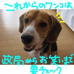 tyeku_20070914192649.jpg