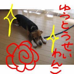 yuutousei.jpg