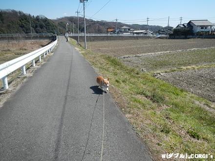 2012041306.jpg