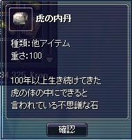 20070217164526.jpg