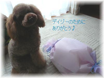 139_20071201222042.jpg