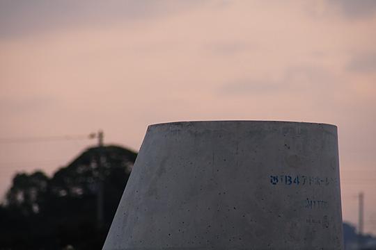 2007 1/29