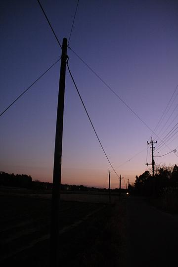 2007 2/3 2