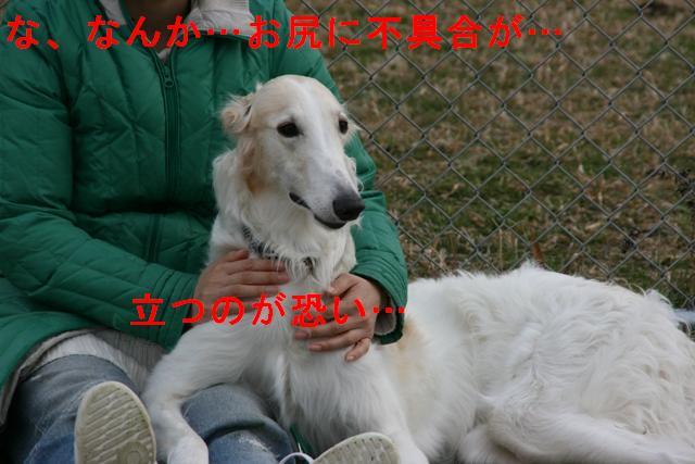 20070316143237.jpg