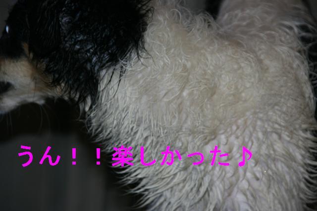 20070326023006.jpg