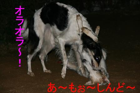20071210005513.jpg