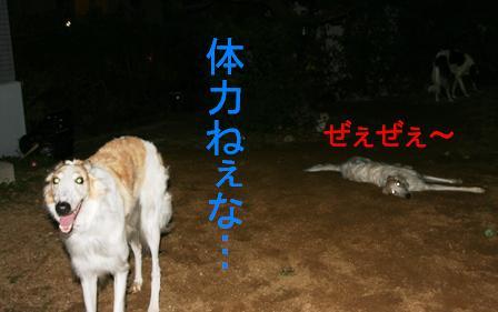 20071210005534.jpg
