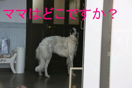 20071210005714.jpg