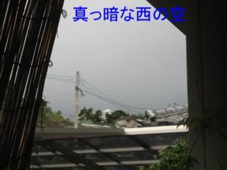 20070820140808.jpg