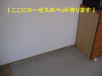 20070905153843.jpg