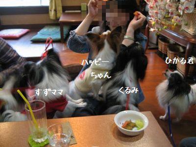 blogIMG_4576.jpg