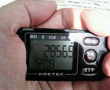 P1007376.jpg