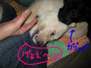 らいあんの必殺技?!