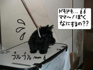 ドキドキ・・・★★