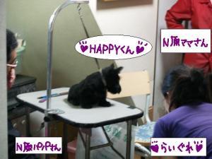 ♪ハッピ~くん♪