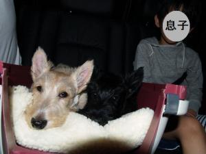 ♪行きの車中~♪