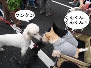 ♪クンクン・・・♪