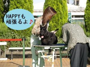 ♪HAPPYくん♪