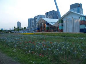 ♪お花畑~♪