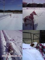 2005-12-14-1.jpg