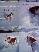 2005-12-15-1.jpg