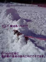 2005-12-16-1.jpg