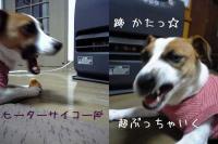 2005-12-5-2.jpg