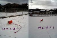 2005-12-5-3.jpg