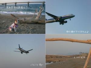 2006-10-16-11.jpg