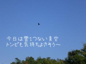 2006-10-21-1.jpg