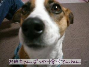 2006-11-23-2.jpg