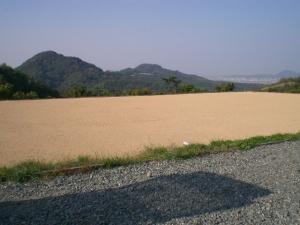 2006-11-5-baba.jpg