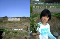 2006-4-23-9.jpg