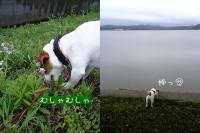 2006-5-8-3.jpg