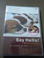 2006-7-20-say.jpg