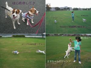 2006-9-14-2.jpg
