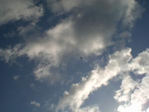 2006-9-23-1.jpg