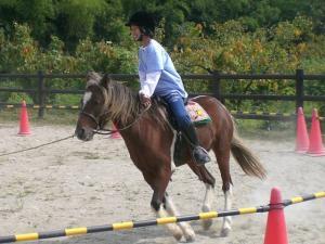 2006-9-30-pony1.jpg