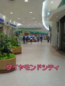 2007-1-6-1.jpg