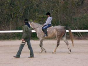 2007-12-2-pony2.jpg
