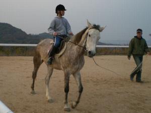 2007-12-2-pony4.jpg