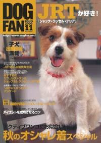 dogfan.jpg