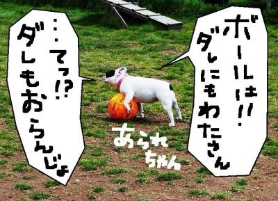 縺シ繝シ繧九・縺ェ縺輔s繧「繝ゥ繝ャ縺。繧・s_convert_20120402214025